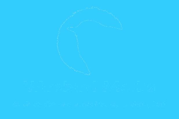 Wirebird_Media_logo-vertical