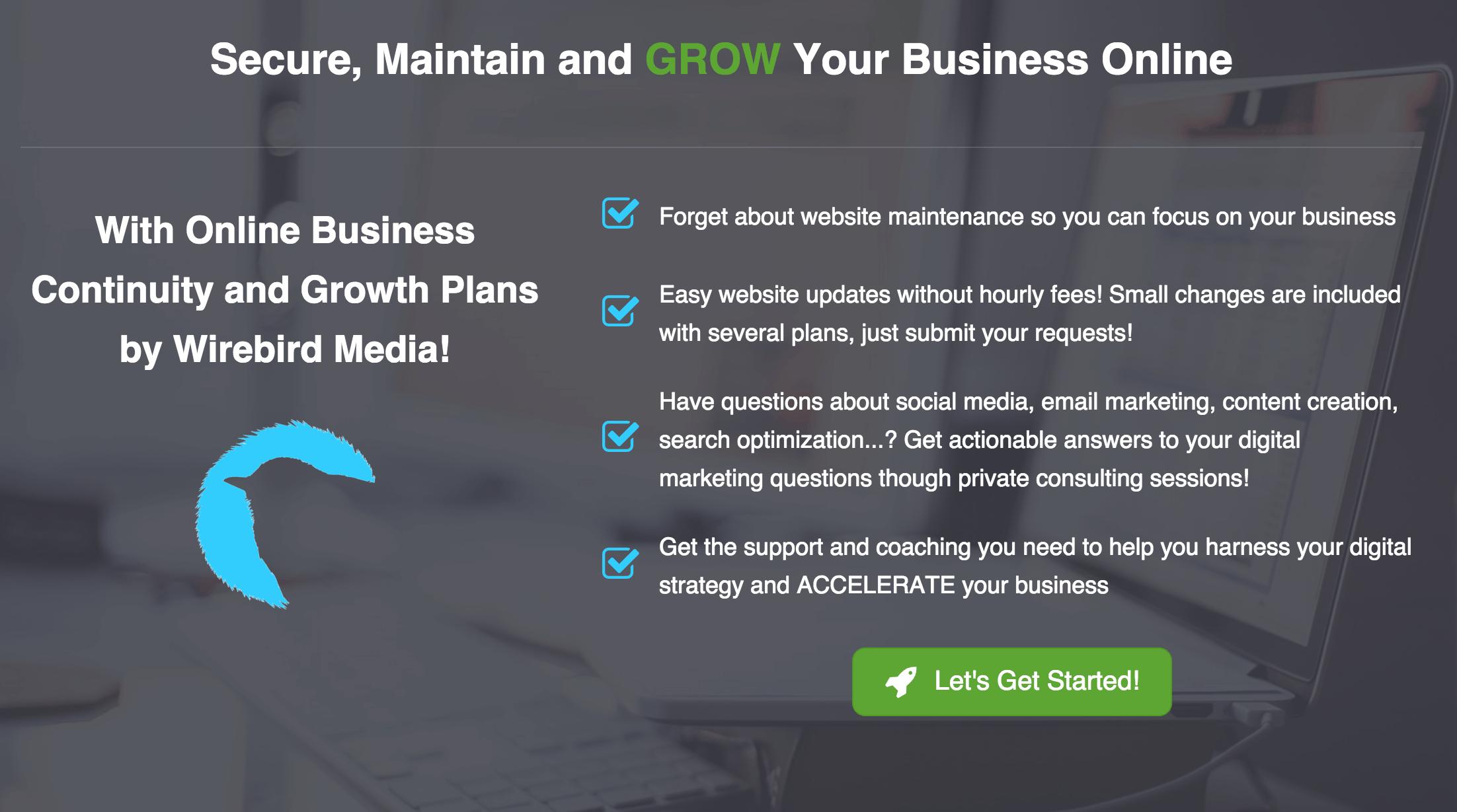 WordPress website Maintenance and online business growth plans from Wirebird Media